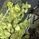 Widmer Brothers Sent Hops
